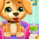 Animals Day Care