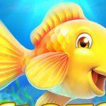 Fishing Frenzy – Super Fishing